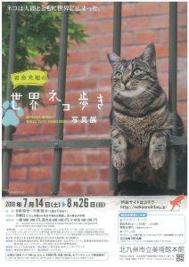 ネコ歩き表